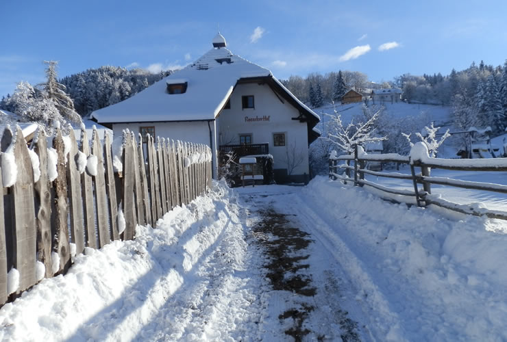 Ronacherhof im Winter